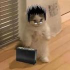 catbattery