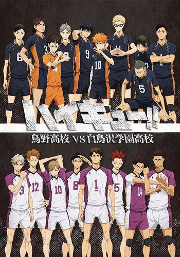 Haikyuu!!: Karasuno Koukou vs. Shiratorizawa Gakuen Koukou Anime Cover