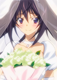 Infinite Stratos 2: Infinite Wedding