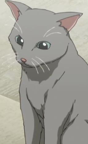 Grey Cat Anime Planet
