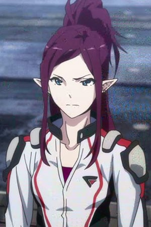 Characters Appearing In Macross Delta Anime