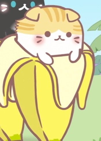 Scottish Fold Bananya