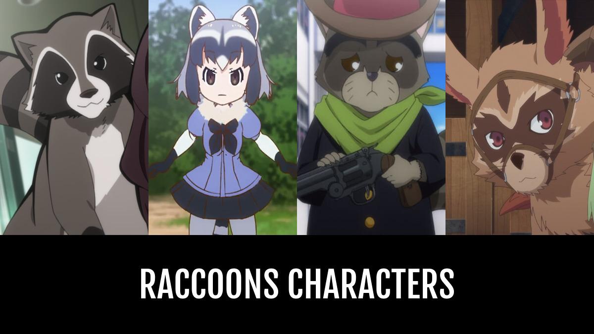 Raccoons Characters Anime Planet