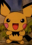 Younger Pichu Brother