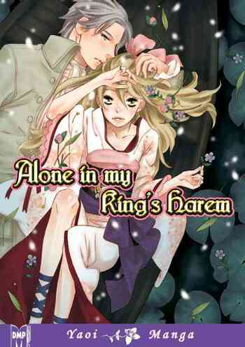 Alone In My King's Harem main image