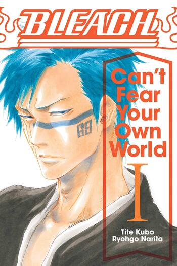 Bleach: Can't Fear Your Own World (Light Novel)