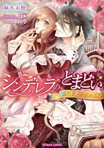 Cinderella no Tomadoi: Okuman Chouja ga Koishita Maid (Light Novel)