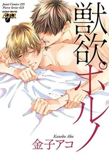 Anime porno manga
