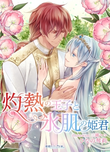 Shakunetsu no Ouji to Koorihada no Himegimi (Light Novel)