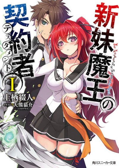 The Testament of Sister New Devil (Light Novel)