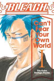 Bleach Cant Fear Your Own World Light Novel