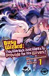 Busy Wizard: This Warlock Just Wants to Provide for His Wives! (Light Novel)