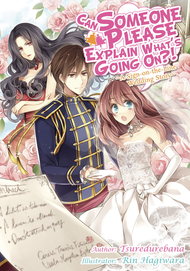 Can Someone Please Explain What's Going On?! (Light Novel)