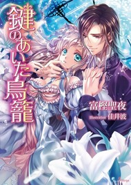 Kagi no Aita Torikago (Light Novel)