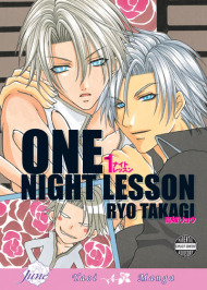 One Night Lesson