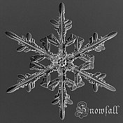 WinterSnowfall's avatar